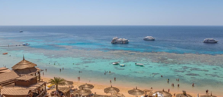Koraal Egypte