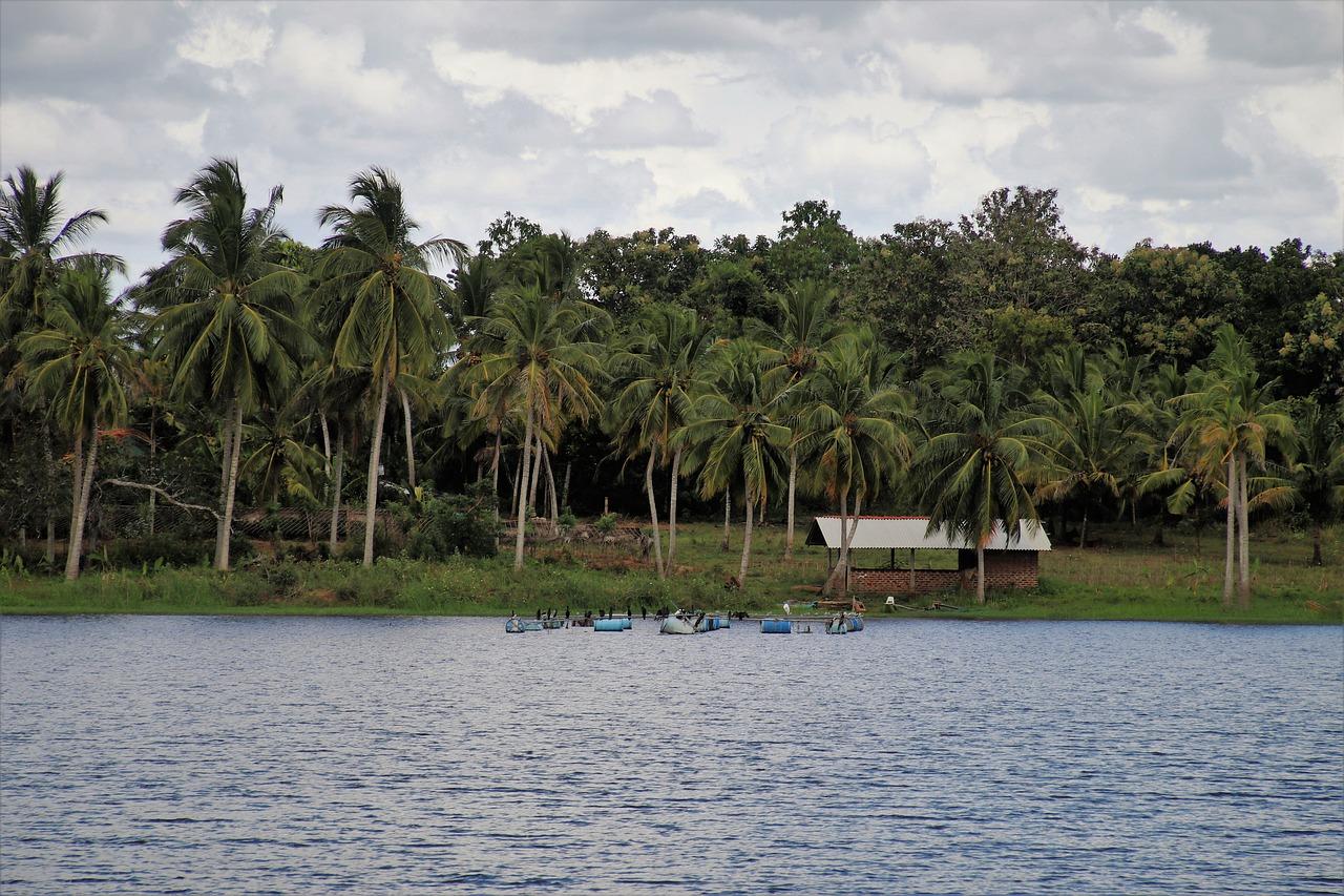 Kitesurfen Sri Lanka